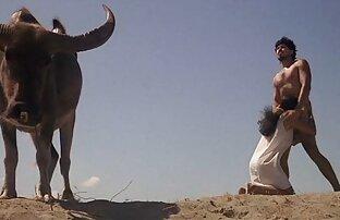 ओरिएंटल एक सदस्य द्वारा जारी किया गया है हिंदी सेक्सी पिक्चर मूवी